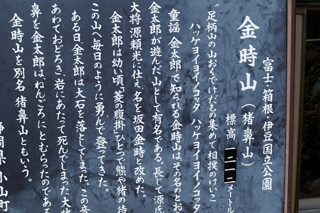 ZDSC01394.JPG
